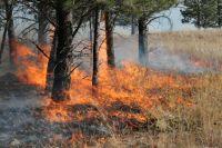 Trotz immer neuer Wald- und Torfbrände gibt es noch keine Reisewarnung für Russland.