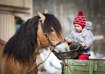 Ein Kleinkind sitzt auf einem Zaun und füttert aus einem Trog ein Pferd.
