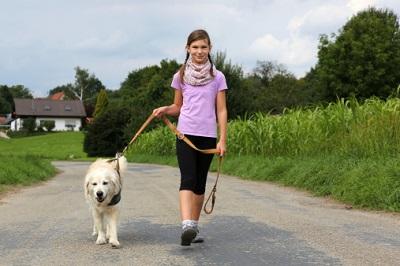 Ein kleines Mädchen führt einen Hund an der Leine.