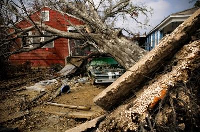 Ein entwurzelter Baum hat ein Auto und Haus schwer beschädigt.