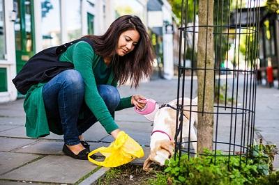 Frau, Hund und Hundekotbeutel