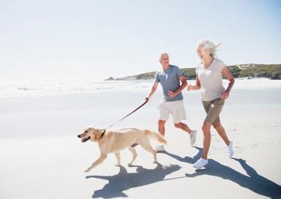 Hund mit Senioren am Strand
