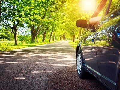 Mit Autokredit finanzierter PKW fährt durch Allee